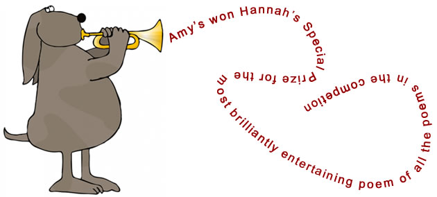 Children's Poetry Competition - Hannah's Special Prize