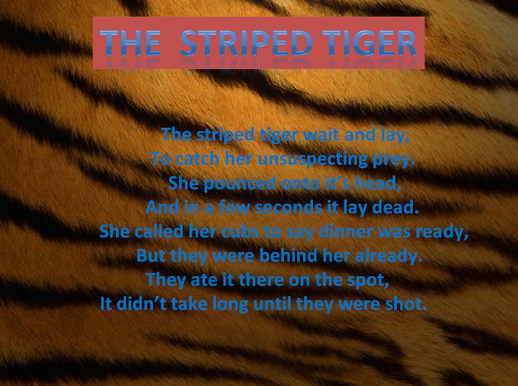 The Striped Tiger, a poem by Caitlin